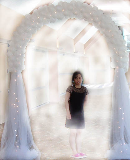 {Tulle Arch with light for Heavenly look}